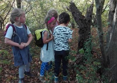 Wildnisschule Aeracura Leipzig Kindergeburtstag Jungen Maedchen Natur 13